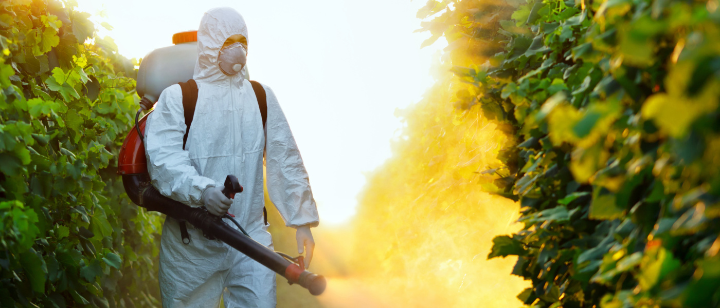 Pest Exterminator - 3 Benefits of Hiring an Expert