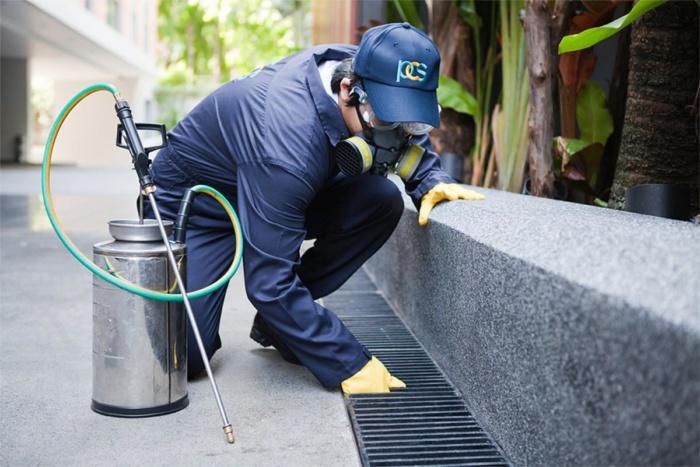 Pest Control Pros Sacramento CA
